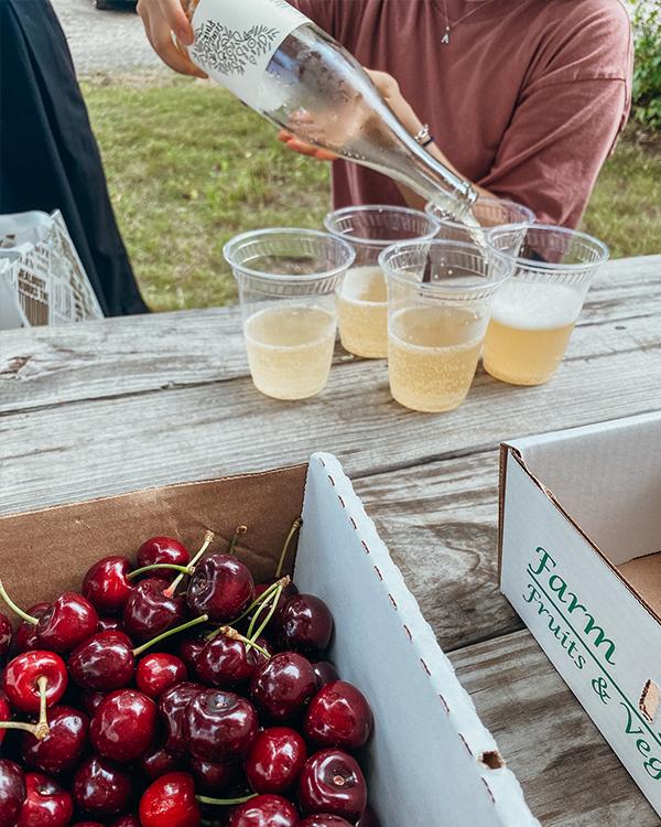 六月底櫻桃季 紐約近郊自採水果農場Rose Hill Farm 以及好喝的蘋果酒