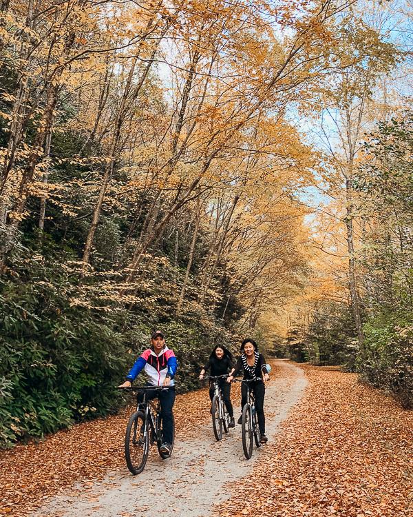 賓州絕美Pocono Biking森林腳踏車 夏秋都適合 離紐約2小時車程